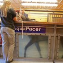 AquaPacer Underwater Treadmill Proves Effective for Equine Osteoarthritis