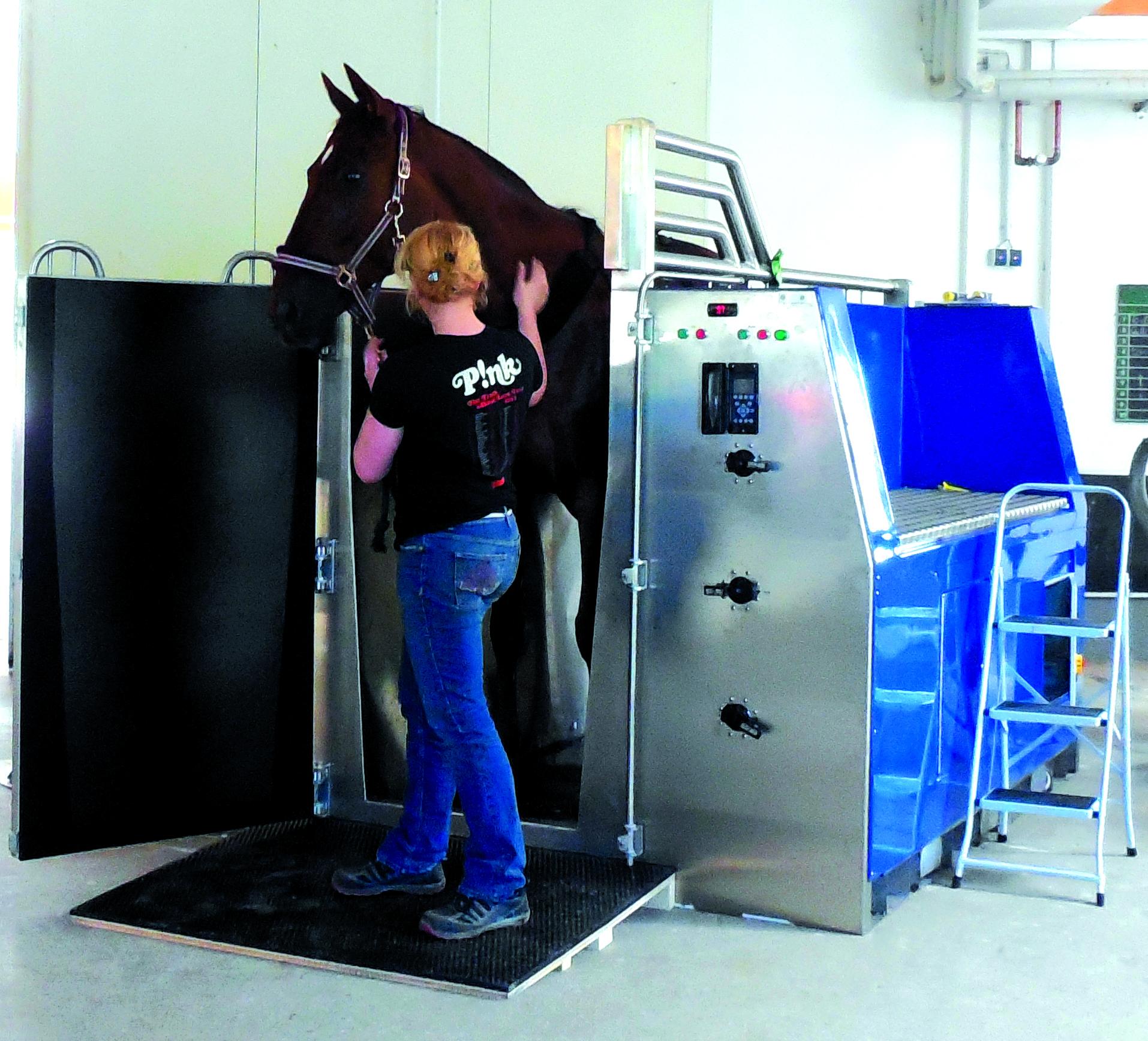 Equine Underwater Treadmill Systems Equine Aquatic