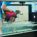 Earn RACE Approved CE Credits and Learn More About Hydrotherapy